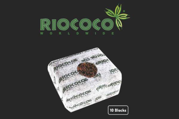 Riococo Logo and Riococo Starter Block - 10 Blocks